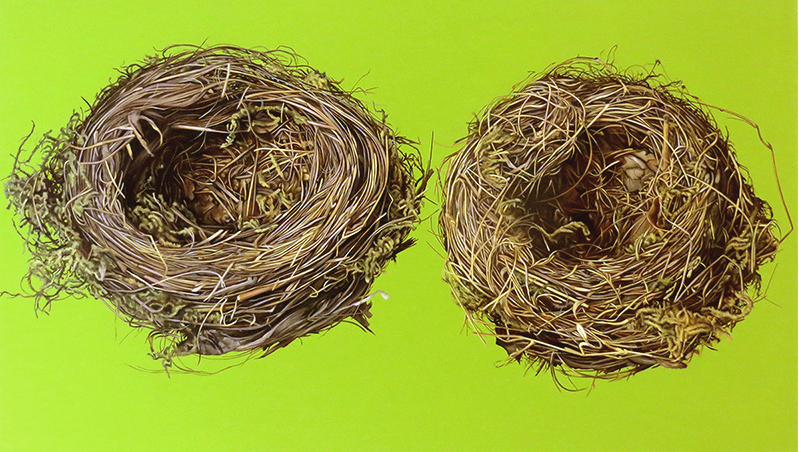 2 Vogelnester, Öl auf Leinen, 120 x 200 cm,2013