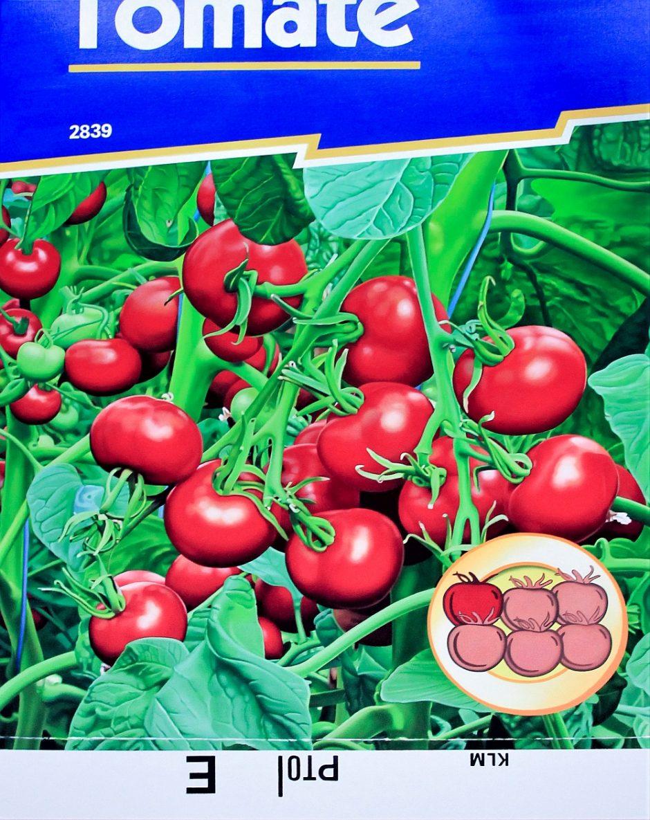 Tomate, 160 x 120 cm, Öl auf Leinwand, 2020